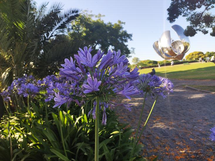 Floralis Generica Park in Recoleta Area