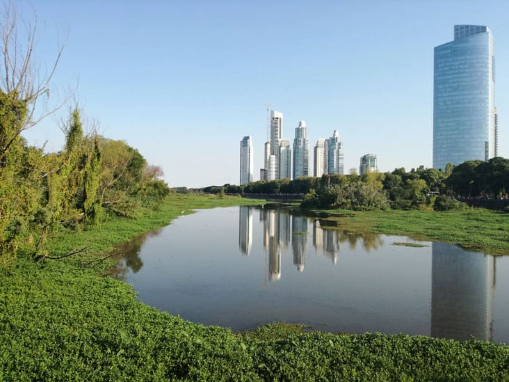 Puerto Madero Skyline - View from Reserva Ecologica