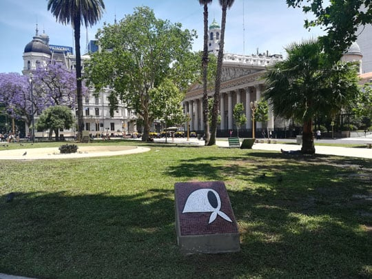 Picture in Plaza de Mayo Catedral of Buenos Aires